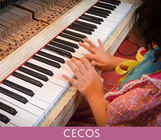Miniatura CECOS